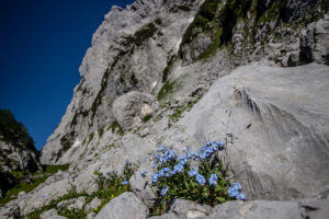 Klettern am kleinen Ödstein | Zustieg